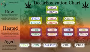 The above chart illustrates the different components of decarboxlyation.